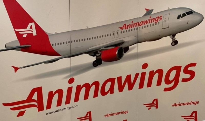 Animawings