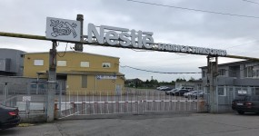 Nestle_Timisoara