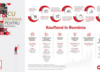 Infografic Pentru Romania CMYK